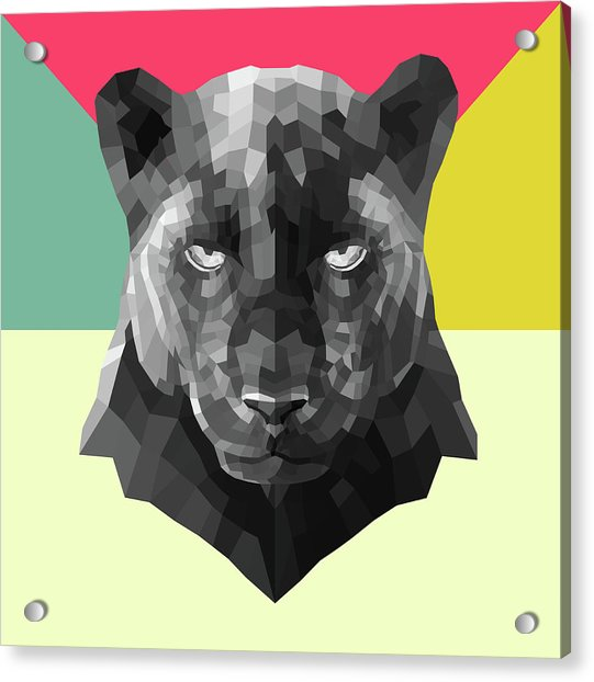 Party Panther Acrylic Print