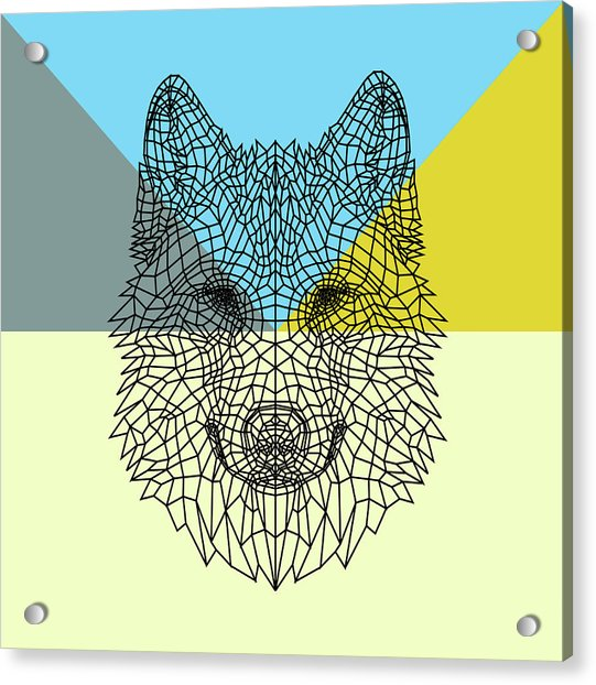Party Wolf Acrylic Print