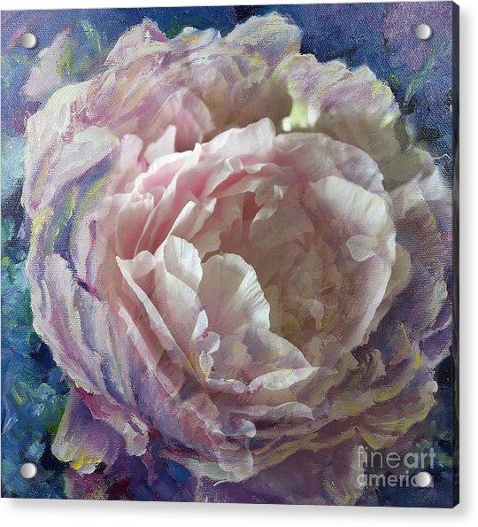 Peony -transparent Petals Acrylic Print