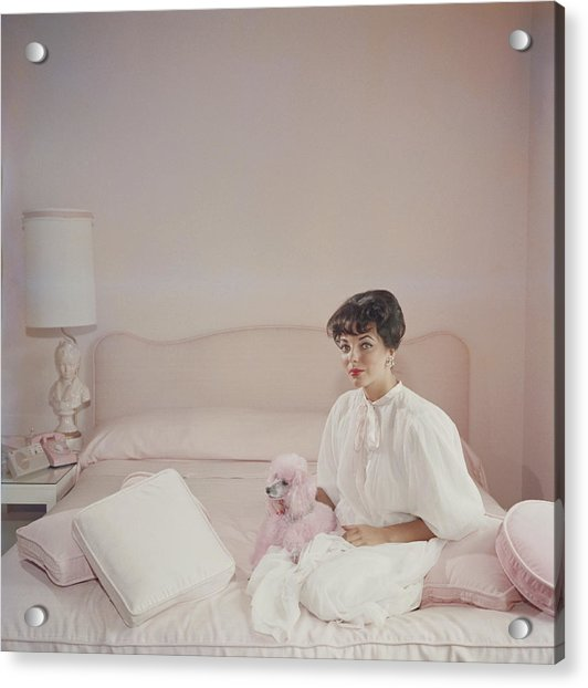 Pink Accessory Acrylic Print