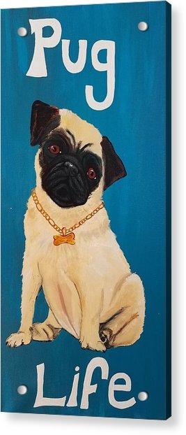 Pug Life Acrylic Print