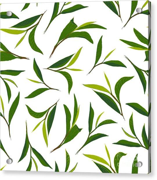 Pure Tea. Botanical Style Seamless Acrylic Print