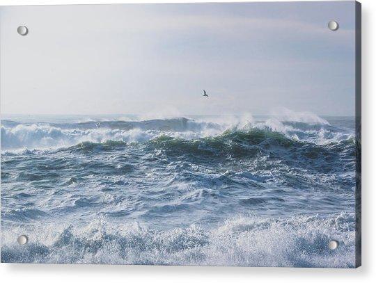 Reynisfjara Seagull Over Crashing Waves Acrylic Print