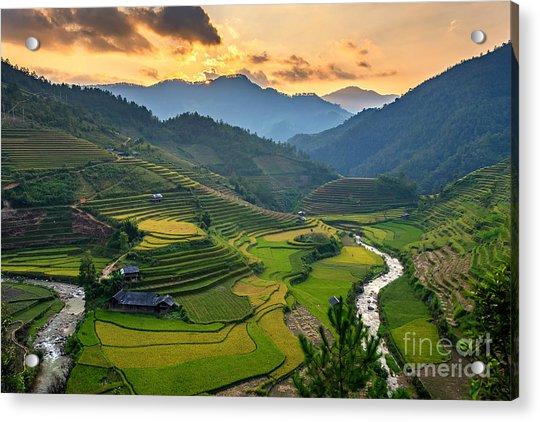 Rice Field On Terraces Panoramic Acrylic Print