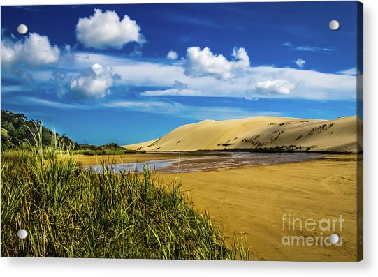 90 Miles Beach, New Zealand Acrylic Print