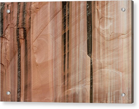 Sandstone Cliff Above Calf Creek Trail Acrylic Print by William Mullins
