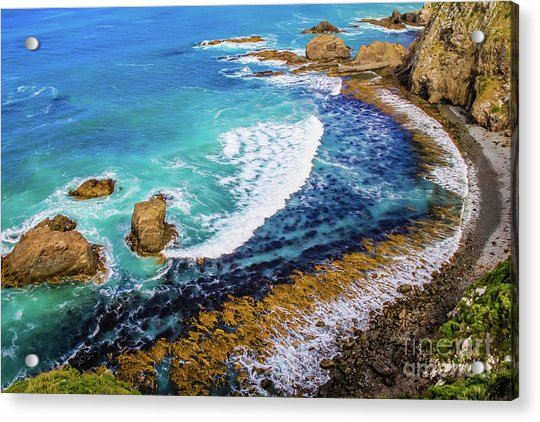 Roaring Bay At Nugget Point Acrylic Print