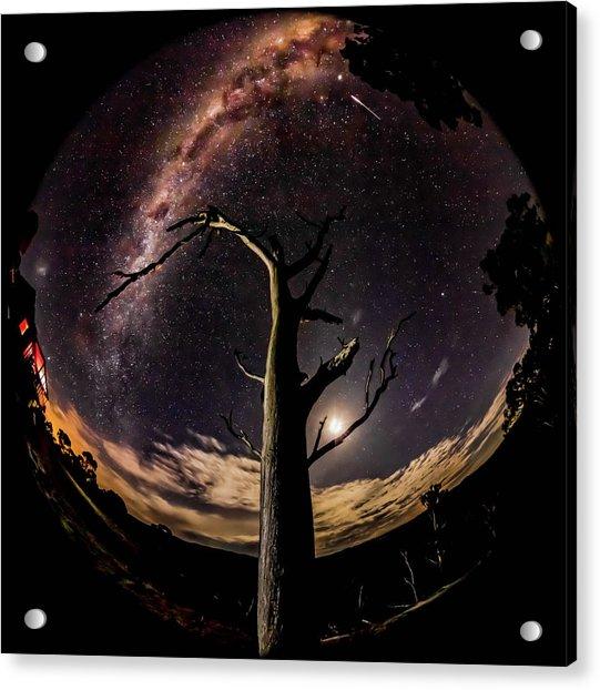Shooting Stars And Milky Way Acrylic Print