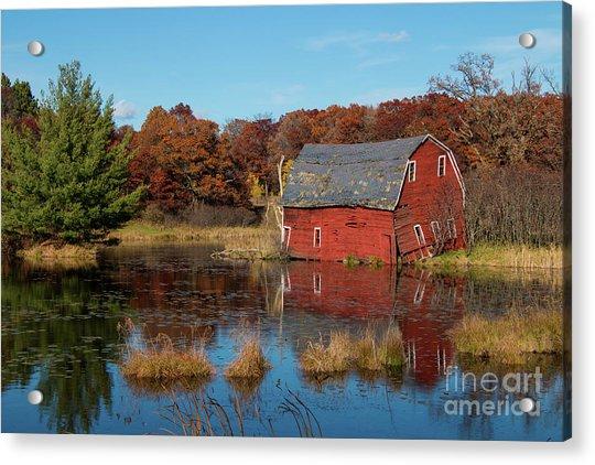 Sinking Red Barn In Fall Acrylic Print