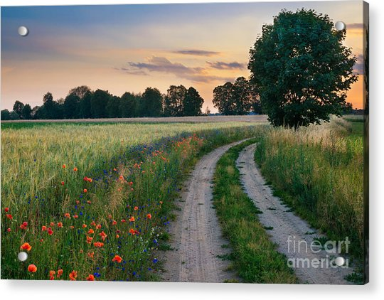 Summer Landscape With Country Road And Acrylic Print