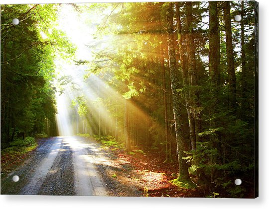 Sunflare On Road Acrylic Print by Thomas Northcut