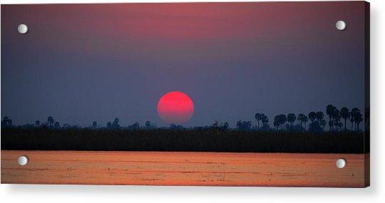 Sunset In Botswana Acrylic Print
