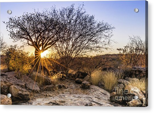 Sunset In The Erongo Bush Acrylic Print