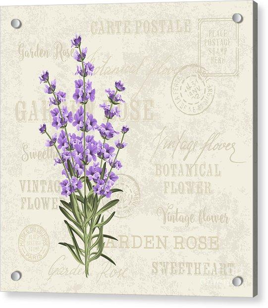The Lavender Elegant Card. Vintage Acrylic Print