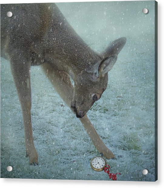 Acrylic Print featuring the photograph Time For Christmas by Sally Banfill