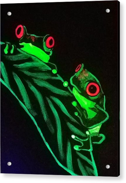 Tree Frogs  Acrylic Print