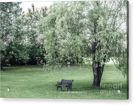 Under The Willow Tree Acrylic Print