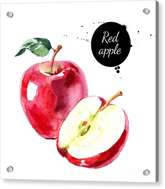 Watercolor Hand Drawn Red Apple Acrylic Print