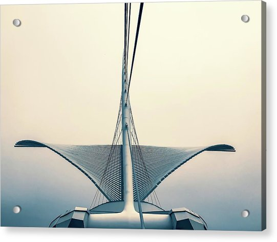 Wings Acrylic Print