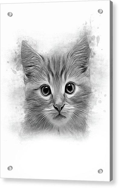 You've Got A Friend Acrylic Print