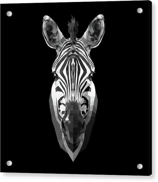 Zebra's Face Acrylic Print