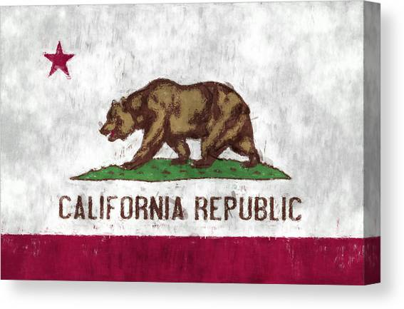 California Bear Flag Typography Art iphone case