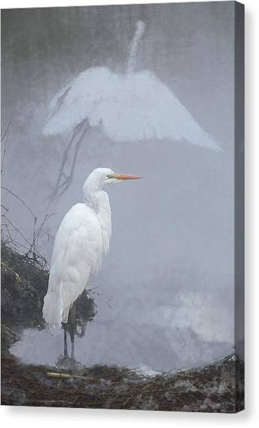 .  .  .  Into The Mist  .  .  . Canvas Print