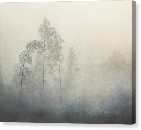 -20 Canvas Print by ??smund Kv??rnstr??m