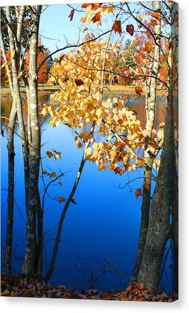 Autumn Trees On The Lake Canvas Print
