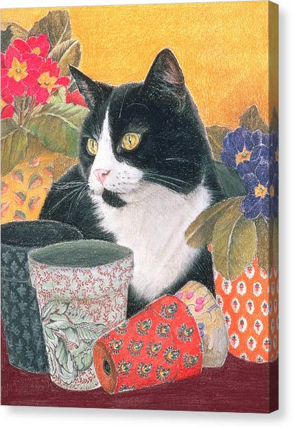 Chin Canvas Print -  Bhajii And Flowerpots by Anne Robinson