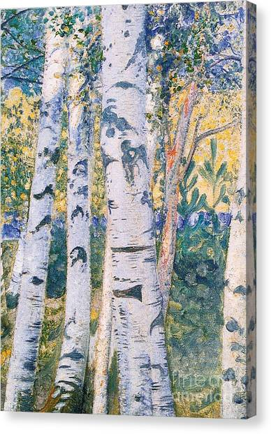 Silver Leaf Canvas Print -  Birch Trees by Carl Larsson