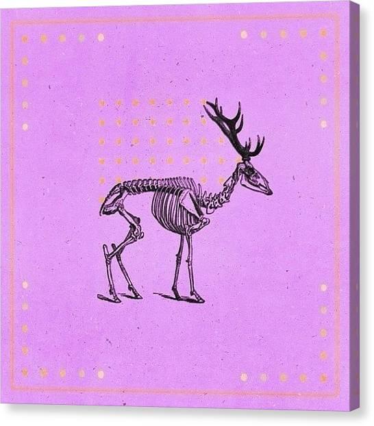 Sparrows Canvas Print - | Cervidae |  An Edit Heavily by Cameron Jack Sparrow