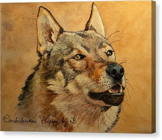 Watercolor Pet Portraits Canvas Print -  Czechoslovakian Wolfdog Portrait by Juan  Bosco