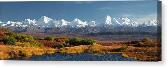Denali Canvas Print -   Denali's Path by Ed Boudreau