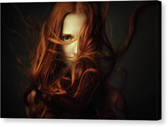 Flames Canvas Print - *** by Dmitry Ageev