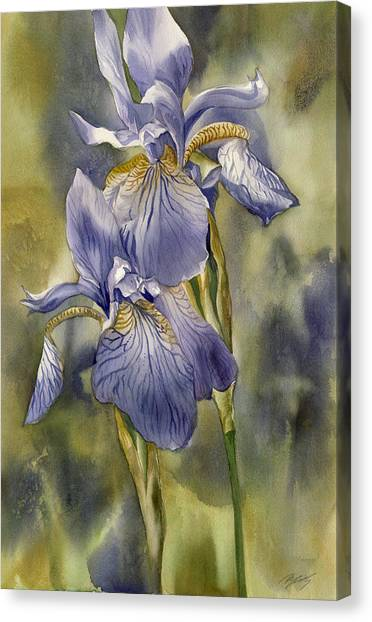 Double Blue Irises Canvas Print by Alfred Ng