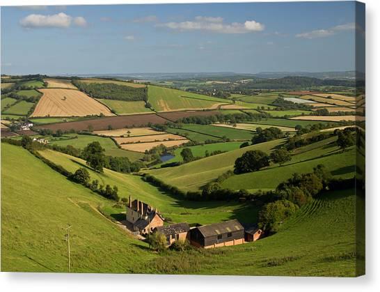 Exe Valley In Devon Canvas Print
