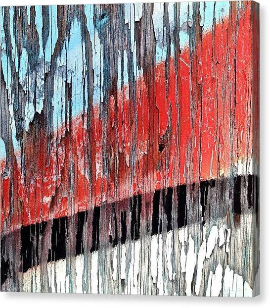 Trout Canvas Print - Exponentially by Kreddible Trout