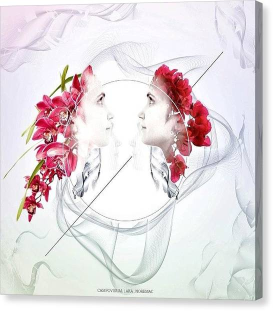 Sparrows Canvas Print - || Face2face || Opportunity Of A by Cameron Jack Sparrow