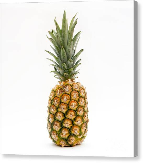 Pineapples Canvas Print -  Fresh Pineapple by Bernard Jaubert