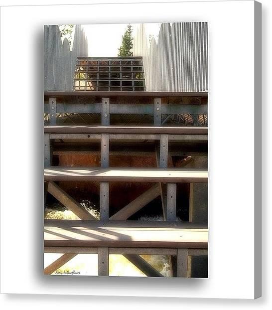 Manitoba Canvas Print - .... #gf_daily #gf_canada #gang_family by Ren Brooks
