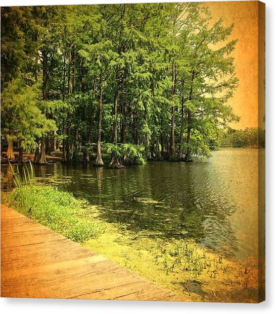 Kayaks Canvas Print - | Greenfield Lake | by Eunice De Moraes