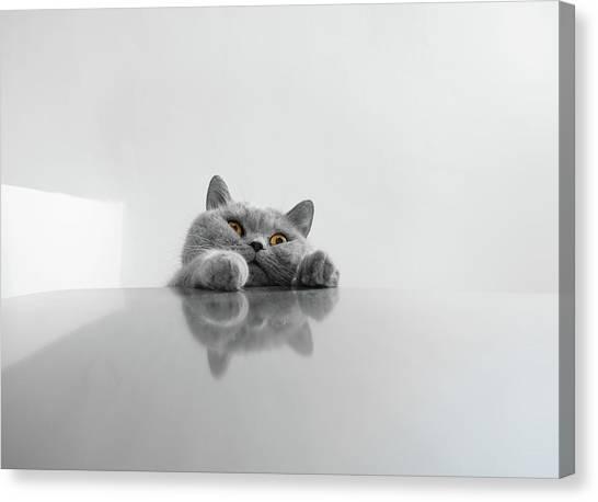 Tables Canvas Print - *** by Keren Segev