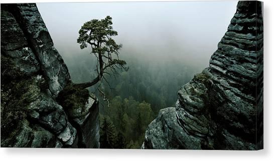 Survival Canvas Print - /\\-l /\\ by Andreas Schott