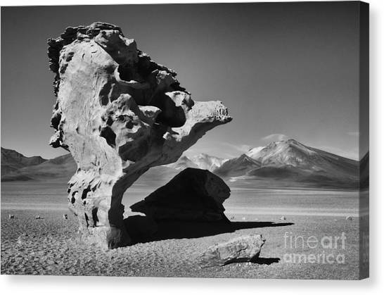 Bolivian Canvas Print -  Landscape Of Bolivia by Bob Christopher
