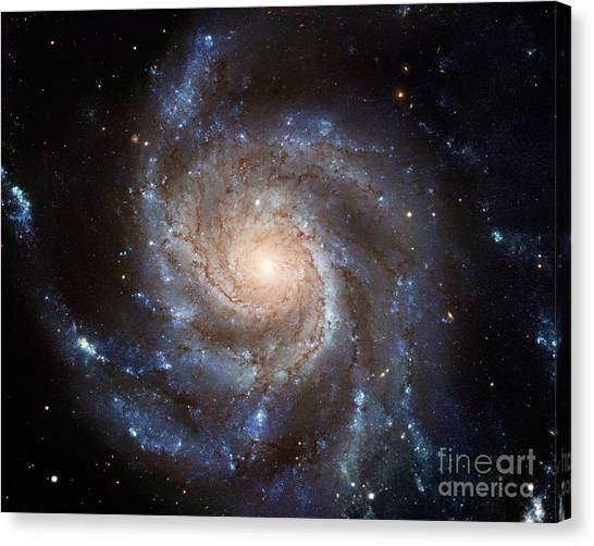 Messier 101 Canvas Print