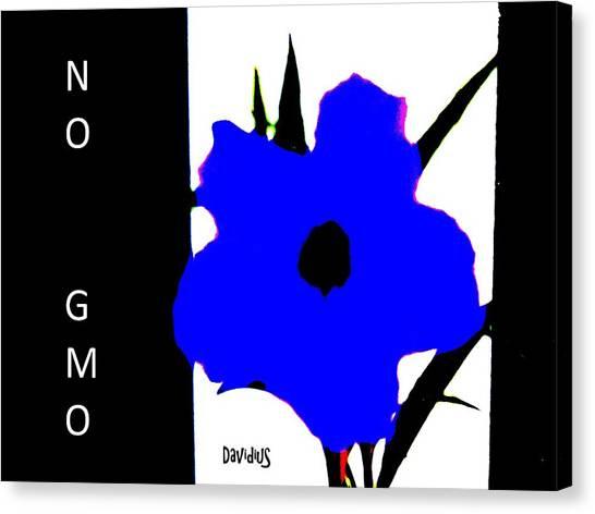 No 2 Gmo Canvas Print