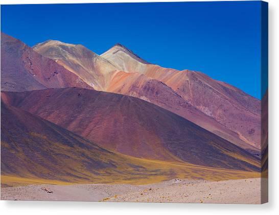 Painted Atacama Canvas Print