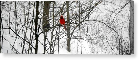 Red Wings In The Woodland Canvas Print by Dina  Stillwell