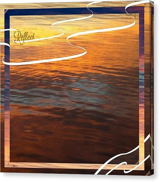 Sparrows Canvas Print - || Reflect || ~as Water Reflects A by Cameron Jack Sparrow